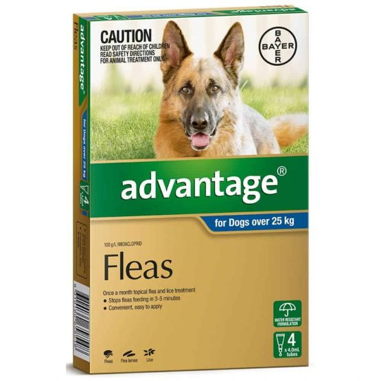 Advantage-dog-over-25kg