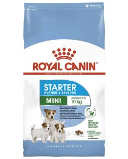 Royal-Canin-Mini-Starter-Mother-and-Babydog