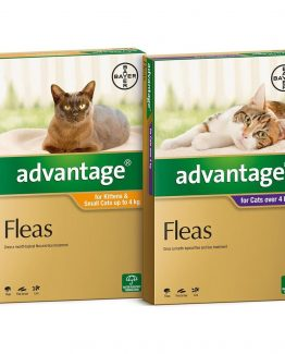 advantage_for_cats_both_sizes