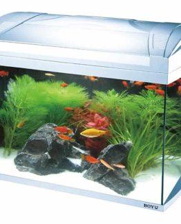 JAD ZJ- 601 Series Aquarium