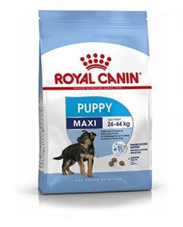 Royal Canin Maxi junior 1
